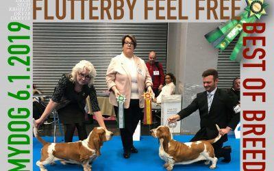 Flutterby Feel Free gjorde det igen!